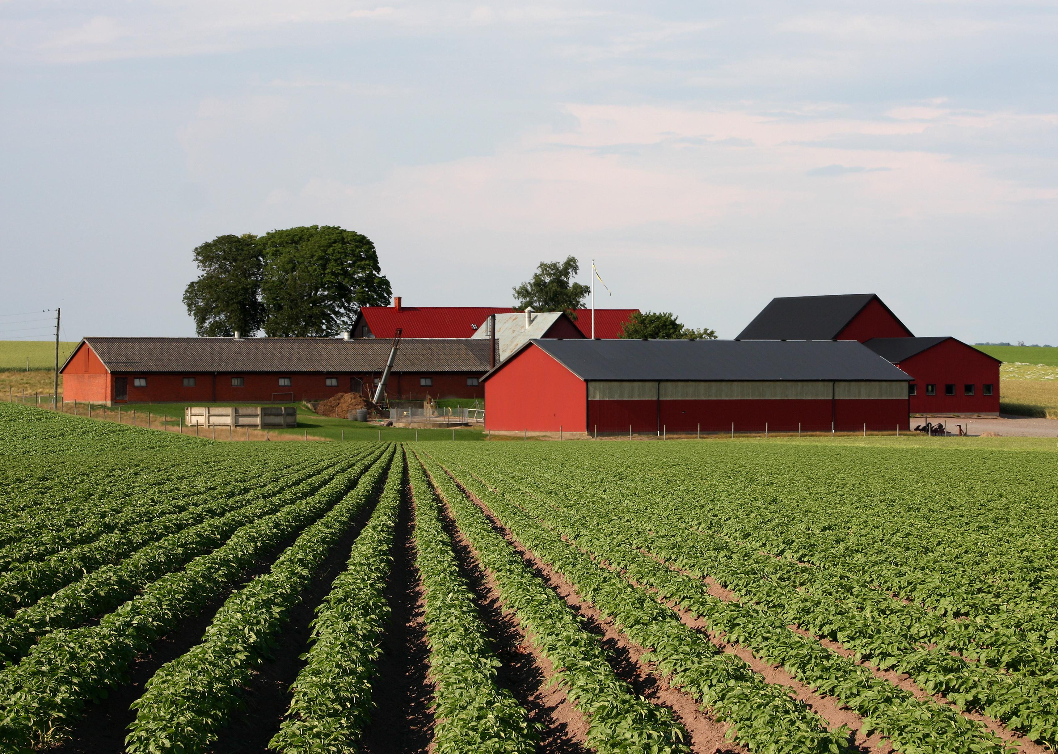 Milyen hatékony a baktériumtrágyával elvégzett talajjavítás?